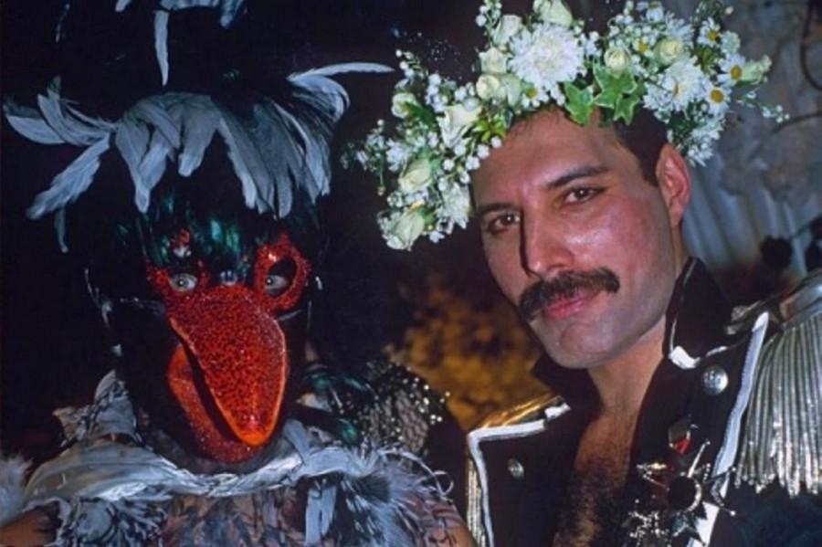 VINTAGE CORNER: Freddie's DragBall